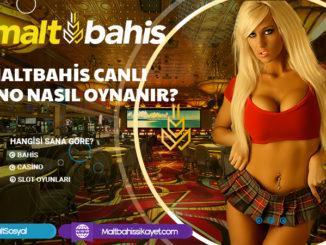 Maltbahis Canlı Casino Nasıl Oynanır
