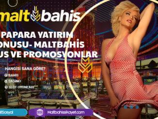 Papara yatırım bonusu- Maltbahis Bonus ve Promosyonlar